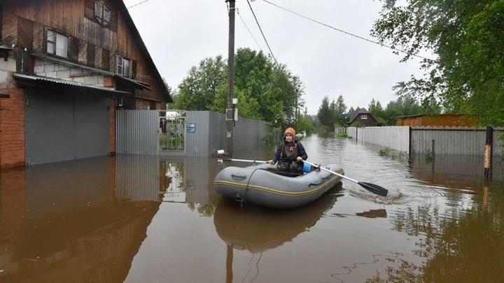 Новосибирские дачи может затопить из-за повышения уровня воды в Оби