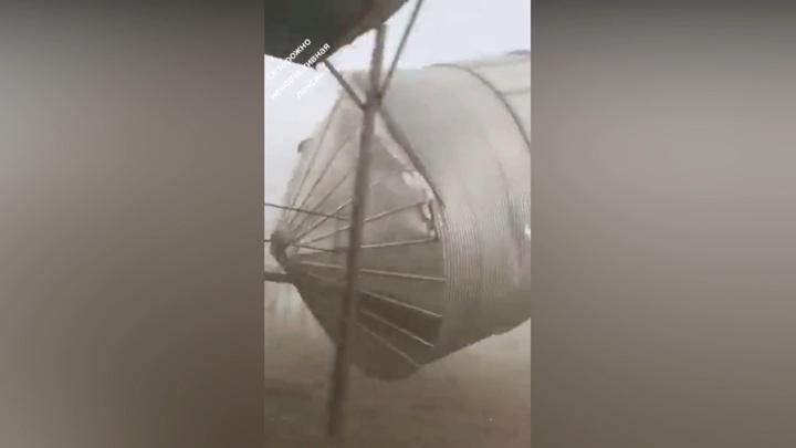 """""""Бочки полетели!"""": на алтайскую ферму обрушился мощный ураган"""