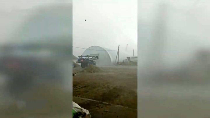 В Алтайском крае буря унесла зернохранилище и повредила технику в одном из хозяйств