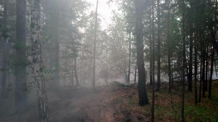 Торфяные пожары повлияли на качество тюменского воздуха