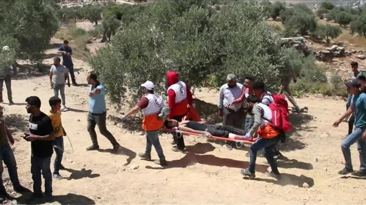 293 палестинца пострадали в ходе столкновений с военными Израиля