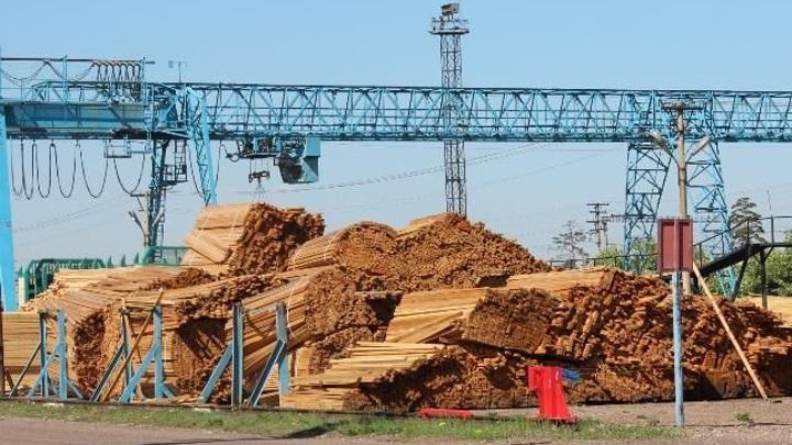 Контрабанду лесоматериалов стоимостью 800 тысяч рублей выявили таможенники в Бурятии