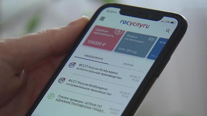 На удаленке и по записи: как будут работать организации госуслуг в Москве