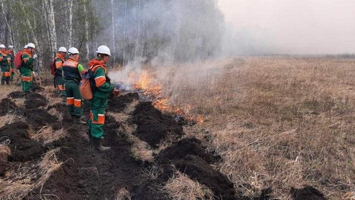 На Ямале спасателям удалось локализовать два лесных пожара
