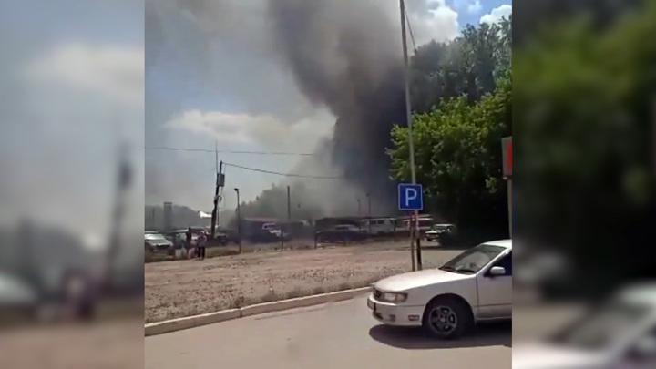 """В Новосибирске """"игры"""" детей с тополиным пухом стали причиной пожара"""