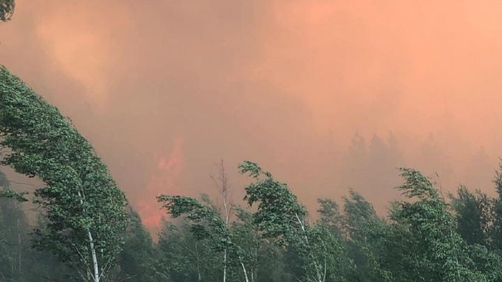 В Челябинской области загорелся лес на площади в 600 гектаров