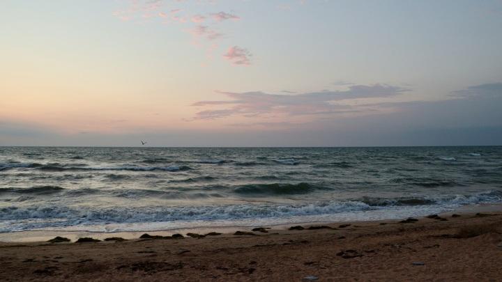 Ученые обсудили в Ростове повышение солености Азовского моря