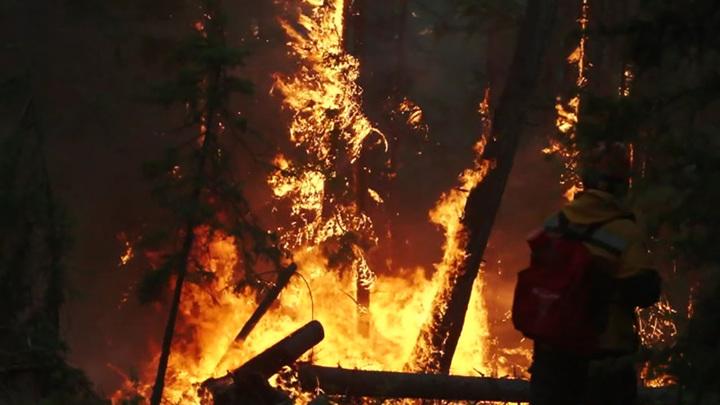 Восток России задыхается в дыму лесных пожаров