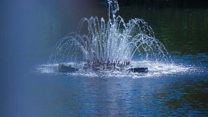 В Мичуринске отдыхающие повредили новый плавающий фонтан