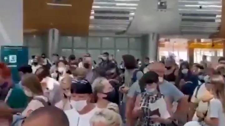 Прокуратура начала проверку из-за очередей на регистрацию в Шереметьево