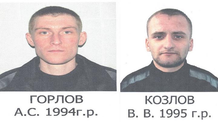 Из колонии-поселения в Новосибирске совершили побег двое заключенных