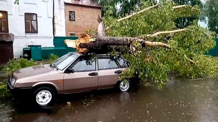 Сломанные деревья, разбитые машины: в Красноярском крае пронесся ураган