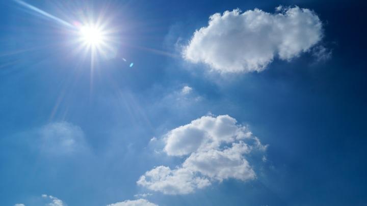 Аномальная жара в Хабаровском каре продержится до конца недели