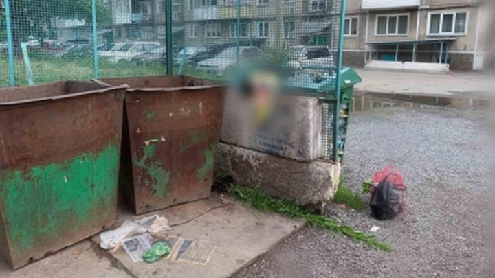 Тело новорожденной малышки нашли сибиряки в уличном баке с мусором