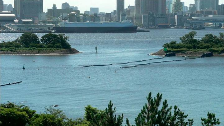 Планктон вызвал скандал перед началом Олимпиады в Токио