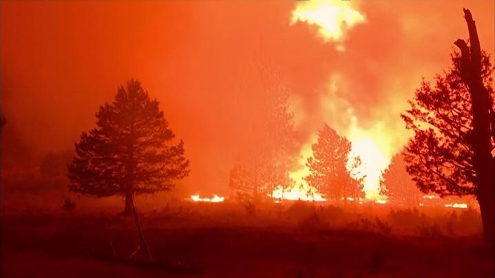 Лесные пожары в США: сотни домов сгорели, тысячи людей эвакуированы