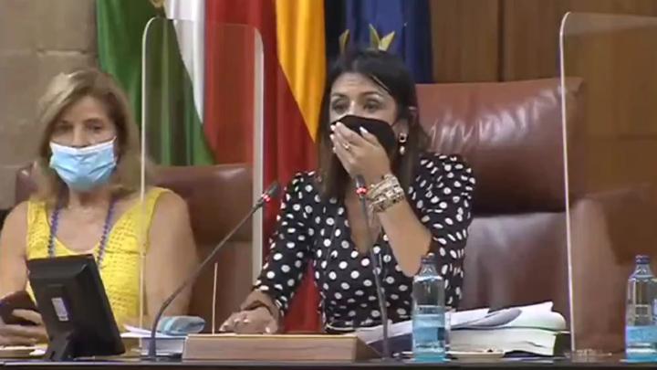 Крыса прервала заседание парламента в Андалусии. Видео