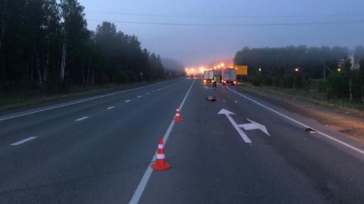 В Челябинской области грузовик раздавил мужчину, лежавшего на дороге
