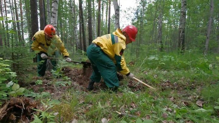 На территории Якутии продолжают действовать 220 лесных пожаров