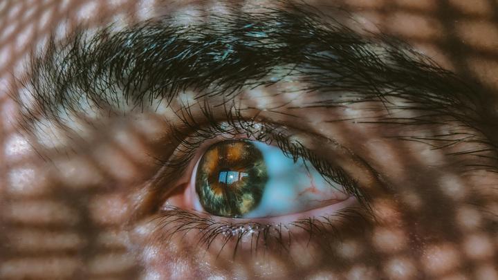 В нашем организме существуют физиологические барьеры, которые защищают чувствительные органы (такие как глаза и мозг) от нежелательного химического воздействия.