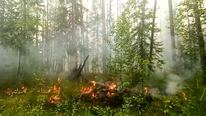 МЧСувеличит противопожарную группировку в Якутии