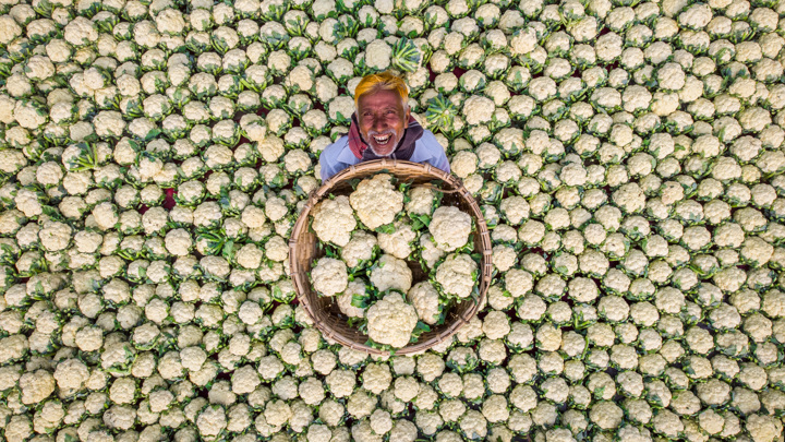 """Снимок Рафида Ясара """"Счастливый фермер"""""""