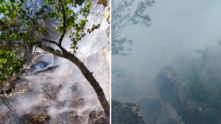 В Челябинской области на границе с нацпарком горит лес
