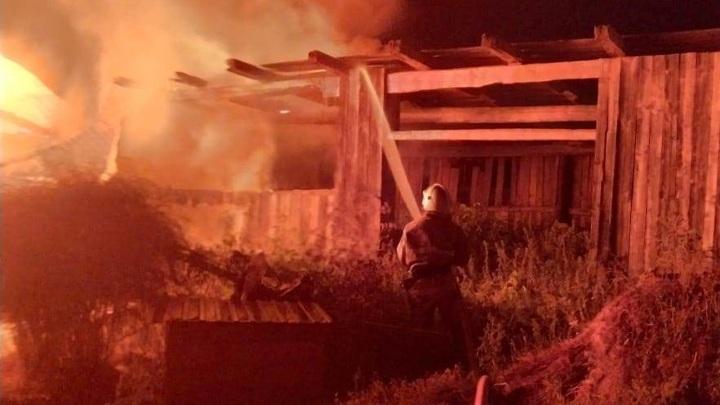 В Татарстане в ночном пожаре погибли семь коров