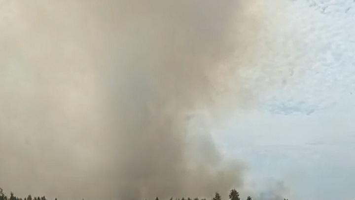 Крупный пожар третий день ликвидируют в Челябинской области