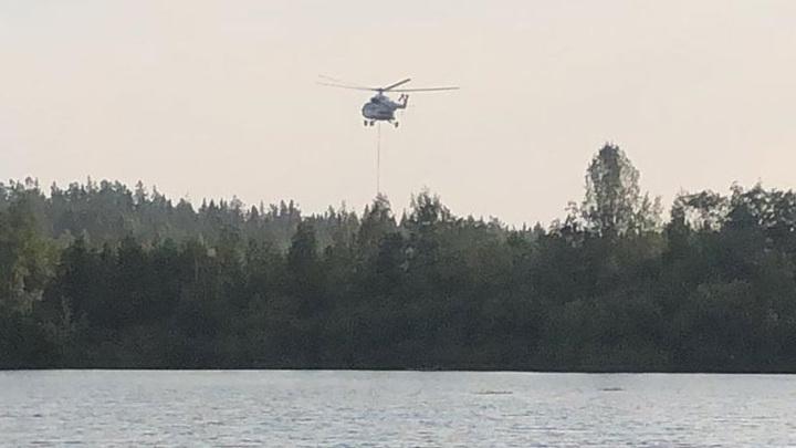 Ущерб от лесных пожаров в Свердловской области превысил 52 млн рублей