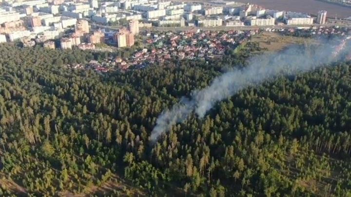 В Тольятти назначена награда в 500 тысяч за поимку поджигателей леса