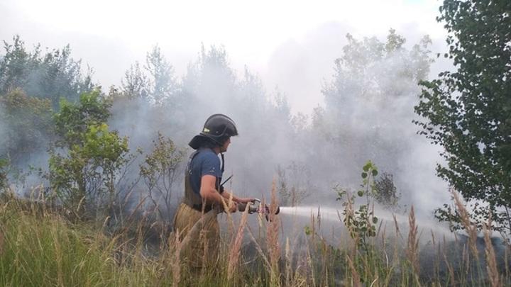 Мэр Тольятти призвал горожан патрулировать леса