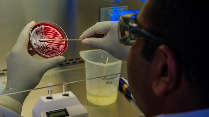 Кишечный микробиом порой совершенно непредсказуемым образом взаимодействует с лекарствами, поступающими в организм.