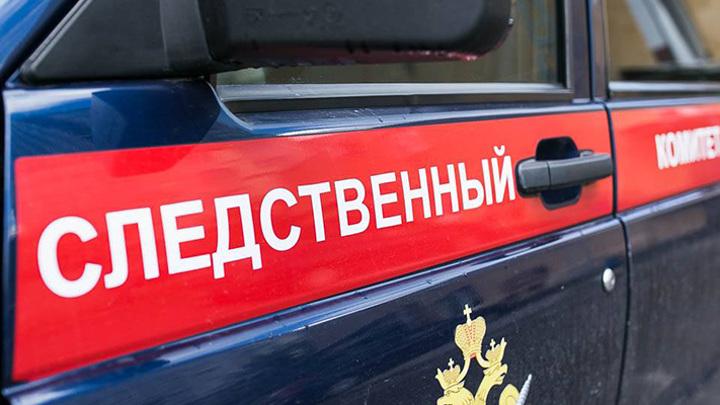 СК начал проверку после падения девочки из окна школы искусств в Карелии