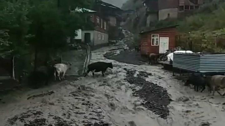 Ливни и сели оставили без дорог жителей двух районов Дагестана
