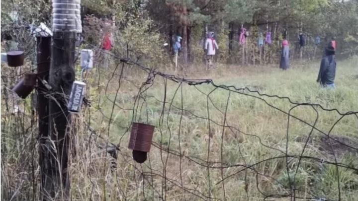 Нижегородские грибники набрели на ужасающую поляну