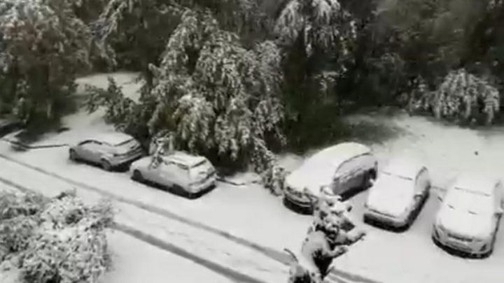 """""""День жестянщика открыт"""": снегопад привел к массовой аварии в Кузбассе"""