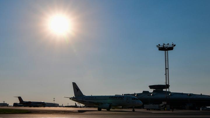 Во Владивостоке самолет приземлился на лису