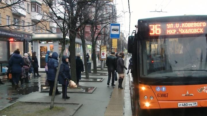 Дефицит водителей: калининградские автобусы не справляются с работой