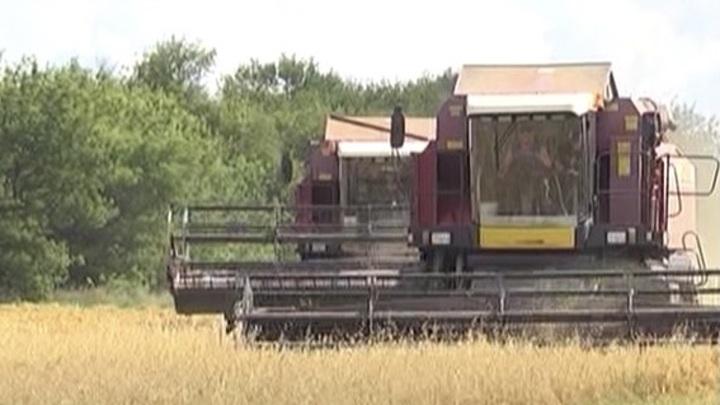 Орловская область получит миллионы для поддержки фермеров