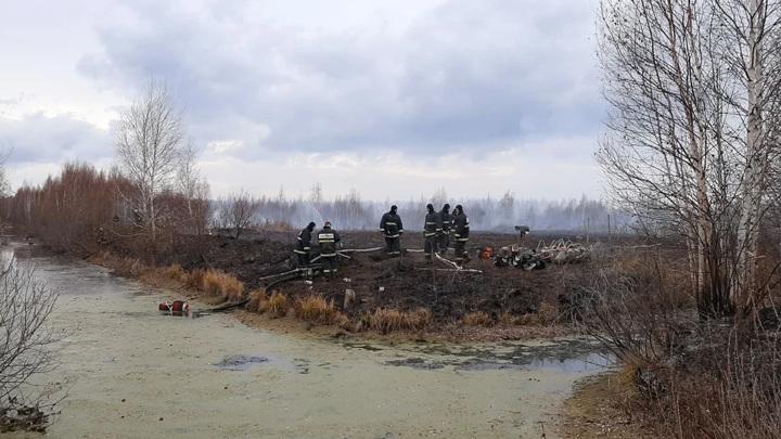 Число очагов пожаров с торфяниками в Екатеринбурге уменьшилось до 12