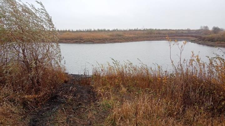 В пруду в Тамбовской области нашли костные останки еще одного человека