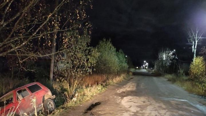 В Карелии пьяный автомобилист сбил подростка