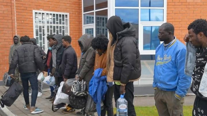 В Смоленской области задержали 12 африканцев