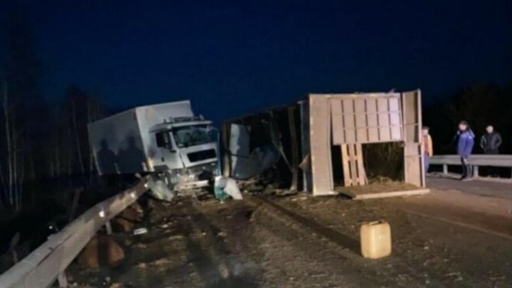 На амурской трассе бараны разбежались из перевернутого грузовика