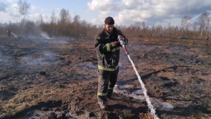 Тлевший в Екатеринбурге торфяник потушен