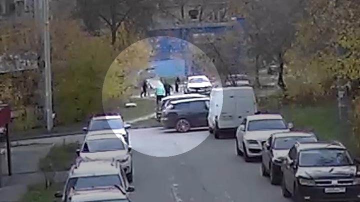 Бойцовский пес напал на женщину с таксой в Дзержинске