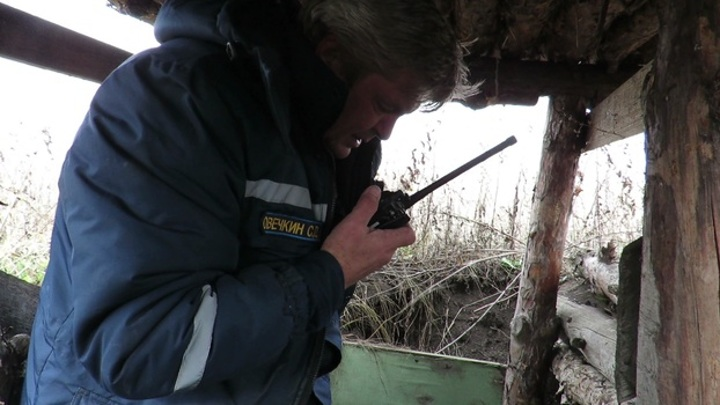 Грибники нашли в лесу под Воронежем 14 немецких минометных мин
