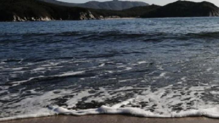 В Приморье к берегу у детского лагеря прибило мертвое тело
