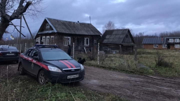 В собачьем приюте в Новгородской области убили, расчленили и сожгли человека